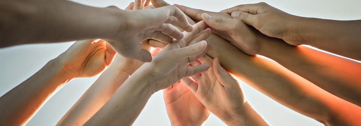Wachstum und Zusammenhalt in der GFC Gruppe